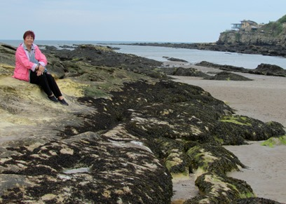 17050813 May 22 Close up of Barb on the rocks in ST Andrews
