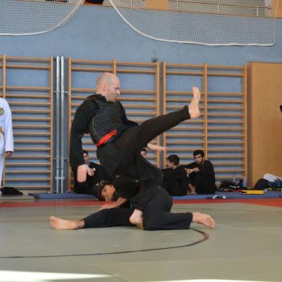 2015 Silat Austrian Open