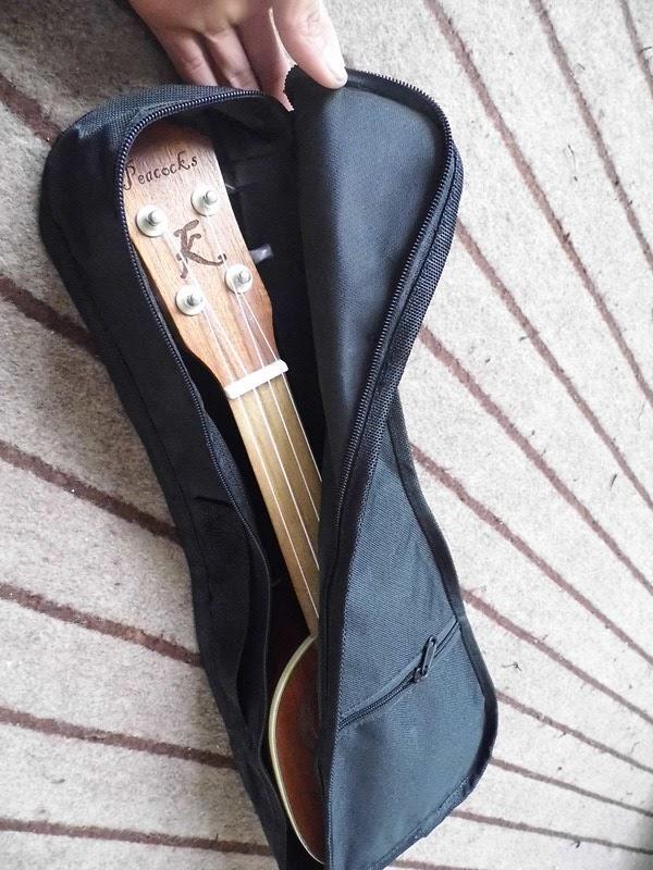 cửa hàng bán bao đàn ukulele giá rẻ