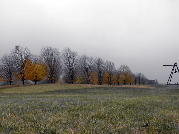 Winter Selections - IMG_9130.jpg