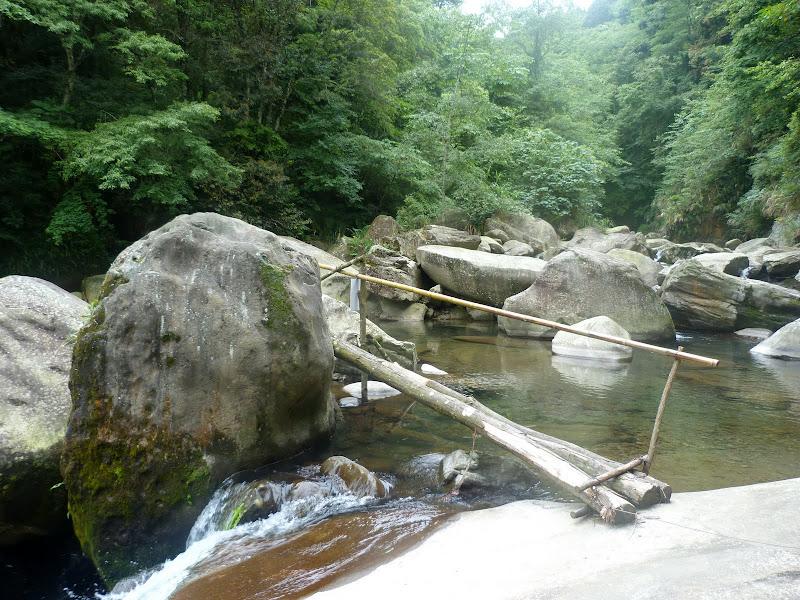 Petite randonnée au sud de Taufen, dans la région de Miaoli - P1330618.JPG
