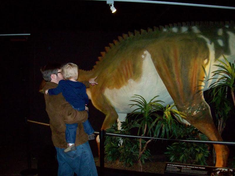 Houston Museum of Natural Science, Sugar Land - 114_6677.JPG