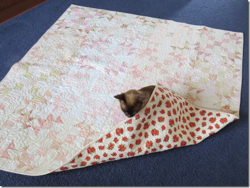 Hershey and Ruths quilt