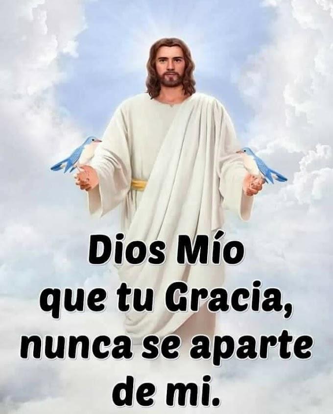 Dios Cuida de tí