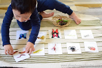 Montessori Inspired Insects Activity