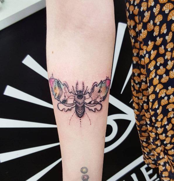 essa_mariposa