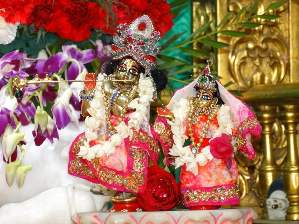 ISKCON Punjabi Bagh Deity Darshan 08 April 2016 (14)