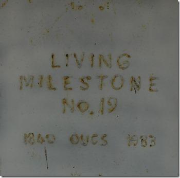 10 living milestone