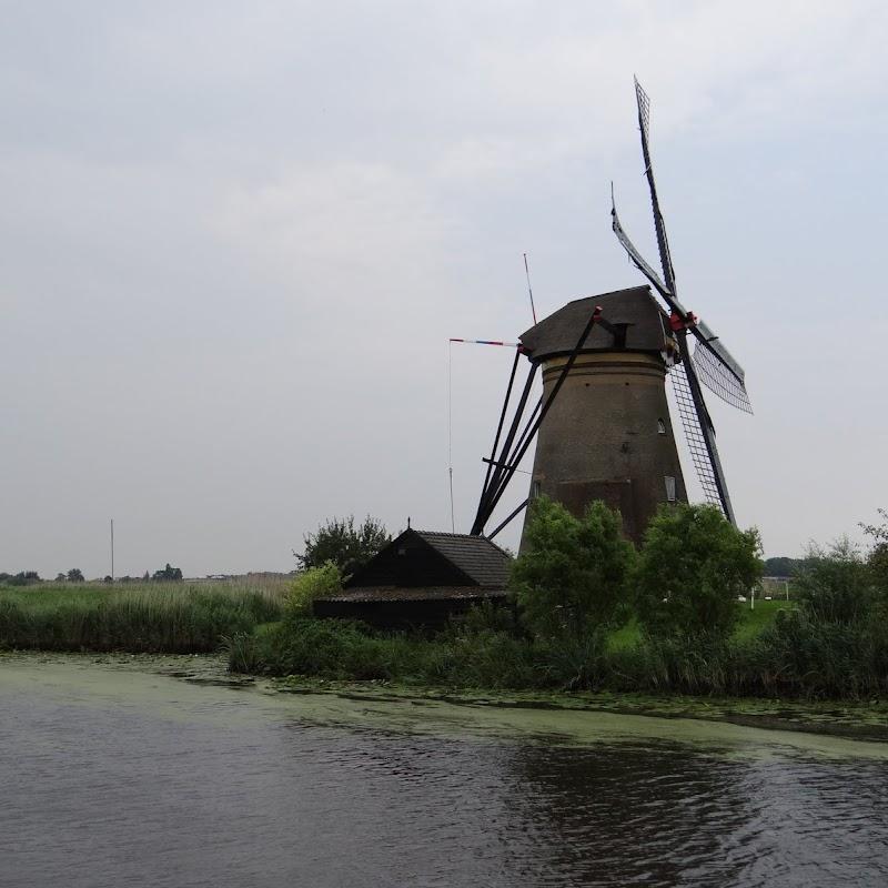 Day_6_Kinderdijk_06.JPG