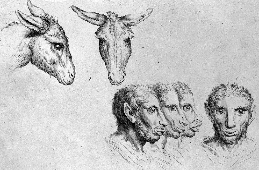 charles-le-brun-physiognomic-heads-4