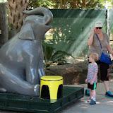 Houston Zoo - 116_8419.JPG
