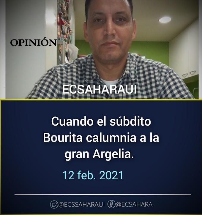 OPINIÓN | Cuando el súbdito Bourita calumnia a la gran Argelia.