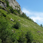 i verdi prati sopra la Berthaz [BiG]
