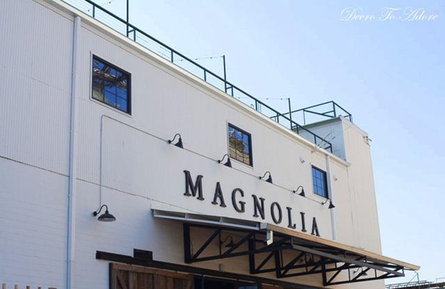 1-magnolia1