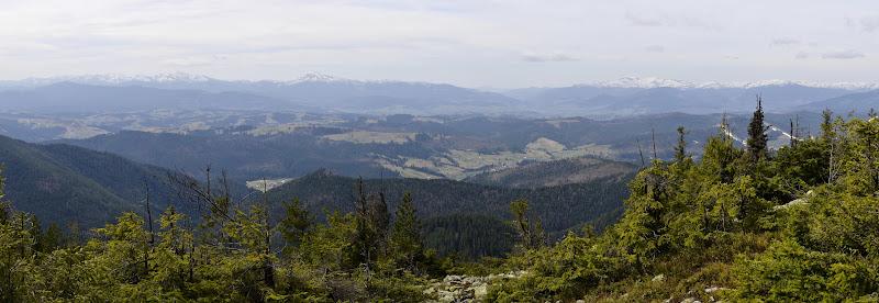 карпаты панорама