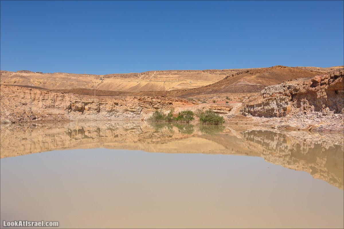 Озёрная гладь кратера Рамон