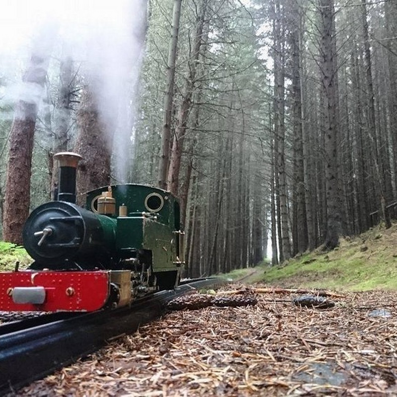 The Biggest Little Railway in the World