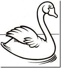 Dibujos cisnes para colorear