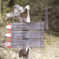 Hofer Alpl Tour 17.05.16-5177.jpg