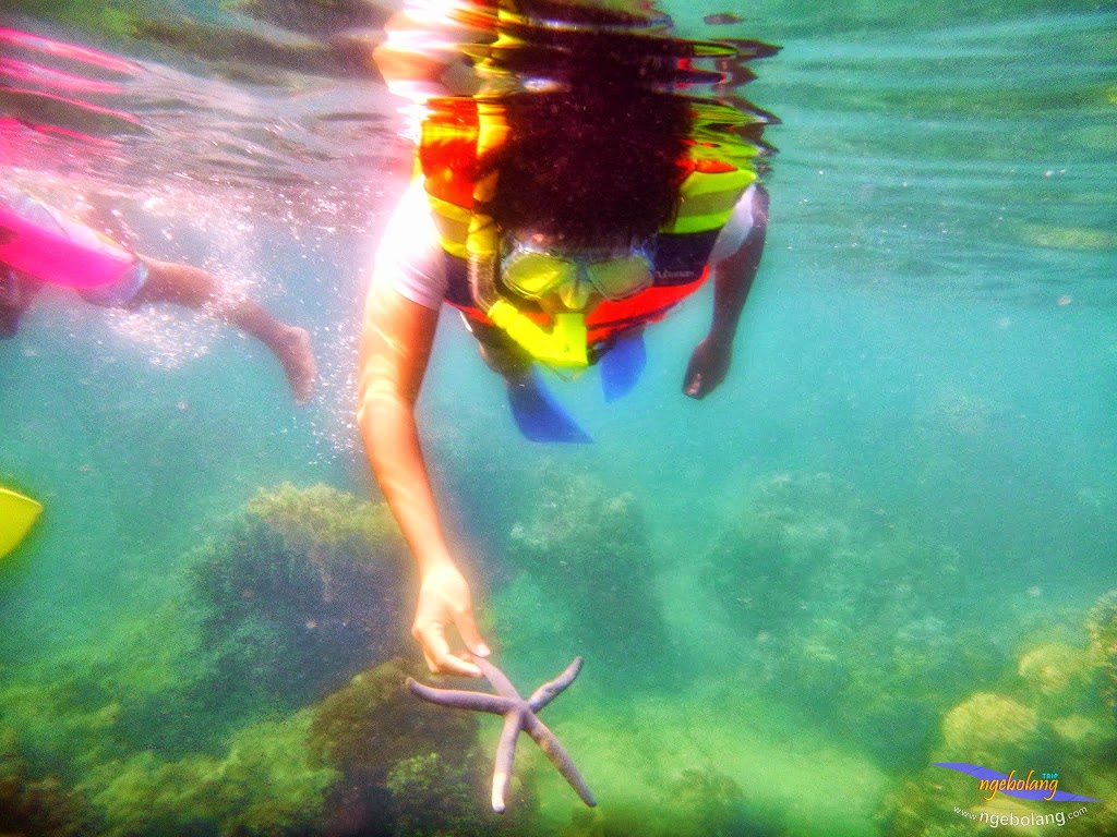 ngebolang-trip-pulau-harapan-wa-7-8-09-2013-16