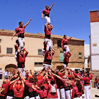 Montoliu de Lleida 15-05-11 - 20110515_190_Vd5_Montoliu_de_Lleida.jpg
