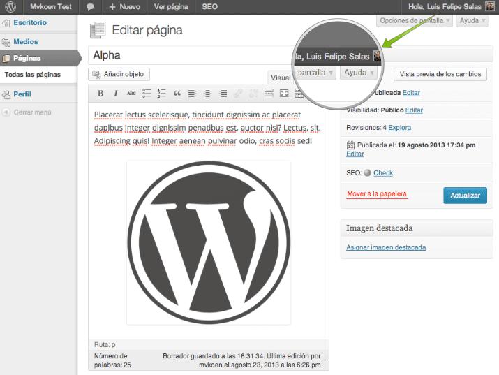 WP DS FAQ Plus – WordPress plugin | WordPress.org