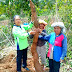 Singkong Raksasa Dari Simanindo Kabupaten Samosir