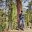 Lokesh Pasayat's profile photo