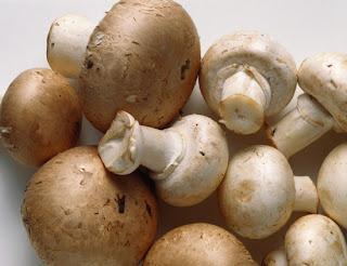 Beneficios hongos