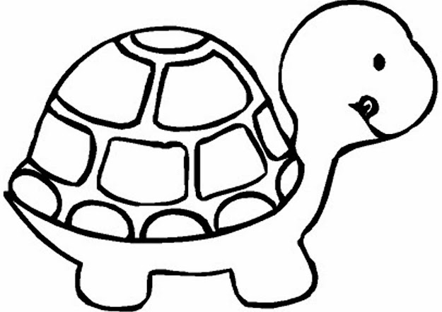 Turtle Pictures To Print And Color