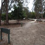 Track next to Bittangabee car park (106640)