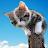 Ellenesse C avatar image