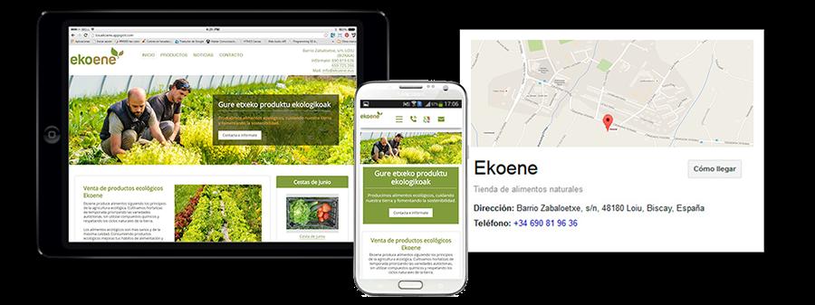 Ejemplo de diseño web de Conquista internet