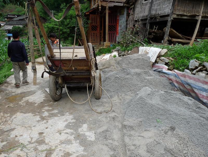 Chine . Yunnan BA MEI 2 - P1260978.JPG