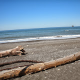 Rialto Beach May 2013 - DSCN0248.JPG