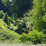 Entre Bû et les Hautes-Lisières : biotope d'Araschnia levana, d'Apatura ilia, etc., 31 mai 2009. Photo : J.-M. Gayman