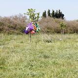 Campaments de Primavera de tot lAgrupament 2011 - _MG_2268.JPG