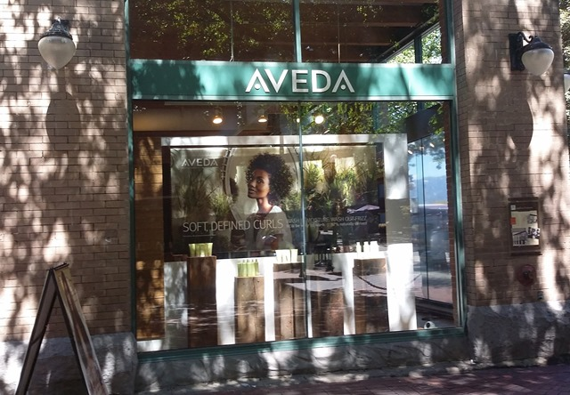 Aveda Institute Vancouver Haircut Review Experience (15)
