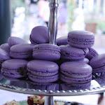 Macaroons - Lavender.jpg