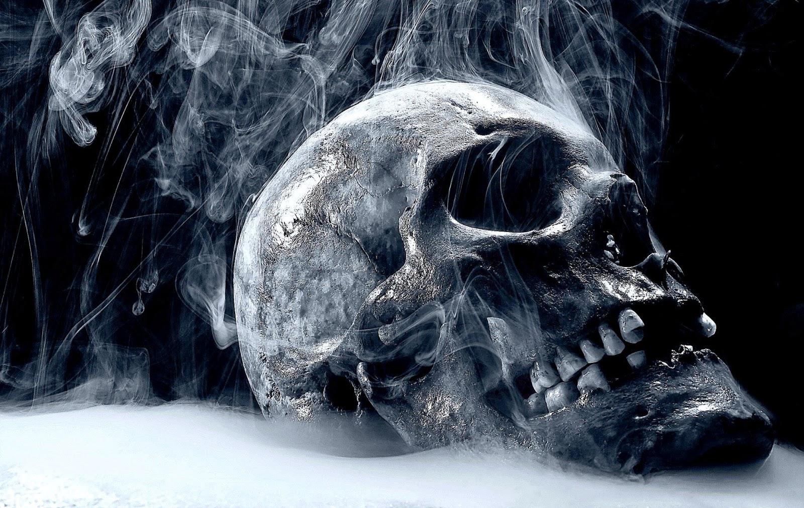Skull HD Wallpapers  fbpapa