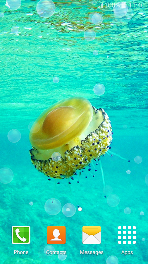 cool jellyfish live wallpapers android apps on google play