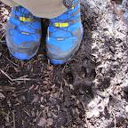 Pumaspuren (und meine neuen Schuhe :)