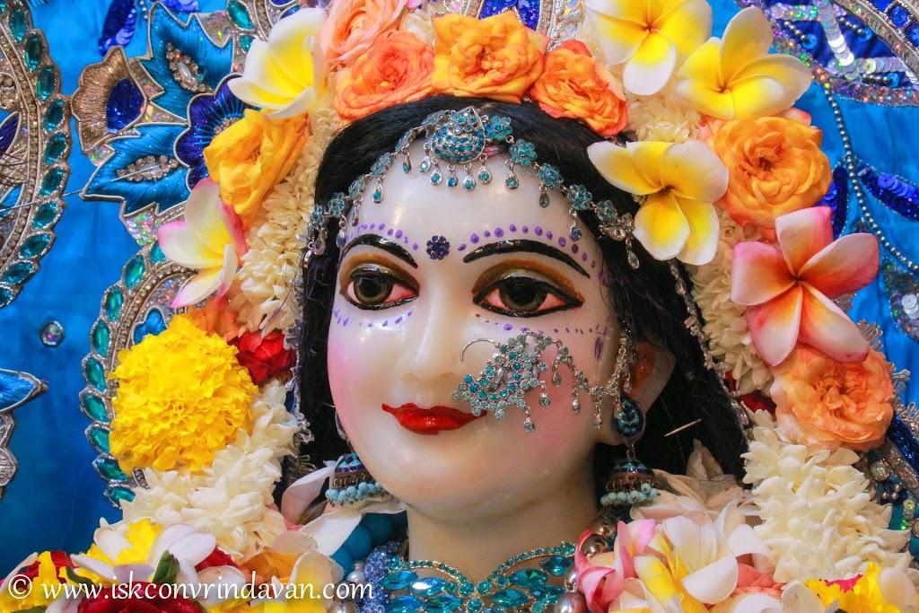 ISKCON Vrindavan Deity Darshan 20 Sep 2016 (13)