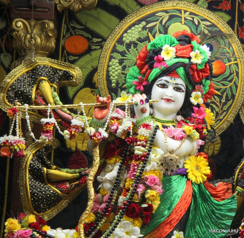 ISKCON Juhu Sringar Deity Darshan on 19th Nov 2016 (10)