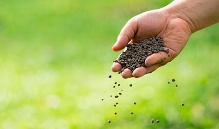 qual a diferença de adubos e fertilizantes