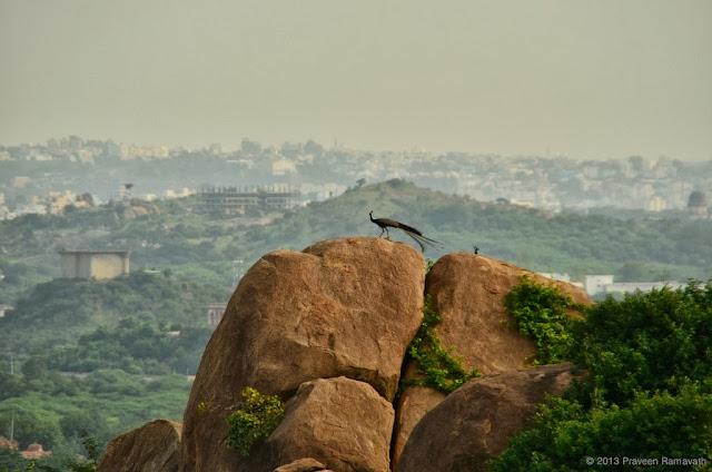 Hyderabadi Baataan - bb2388ddb2f213185bf952fbae5215105754ad31.jpg