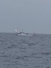 Photo: ・・・んんんんんんー??? あの船は??? こっちの海域で初めて見たゾー! 「釣れてますか~?」