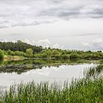 20140510_Fishing_Stara_Moshchanytsia_021.jpg