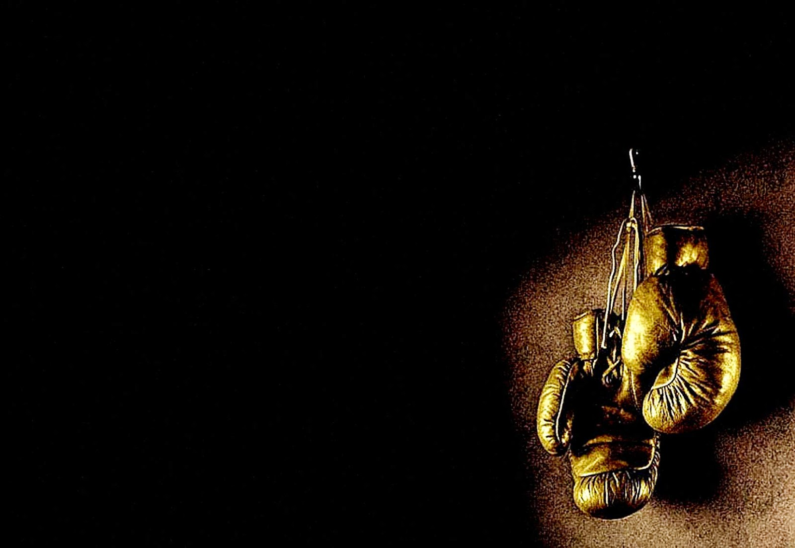 Wallpapers For gt Boxing Gloves Wallpaper