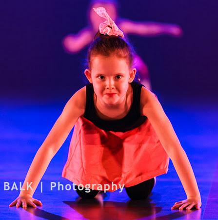 Han Balk Voorster Dansdag 2016-4493-2.jpg